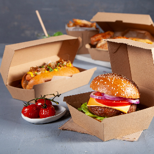 Brown Boxes and Trays displayed with burgers and loaded hot dogs and hot chips- Dash Packaging